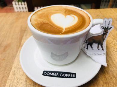saola's first coffee